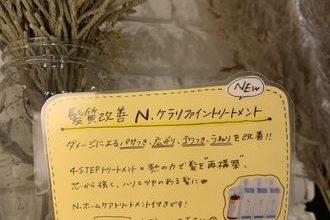 new!! N.ケアリファイントリートメント