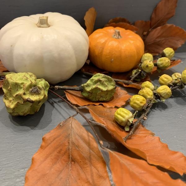 秋のディスプレイ 秋祭り